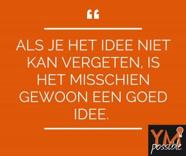 goed idee, slapend idee, idee, ideeen, aan de slag met idee, boekidee, bedrijfsidee, geld voor idee, wakker idee