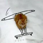 voorbeeld creativiteit, creatief met tekenen, dagelijkse creativiteit, yvettehaas, yvette haas, ympossible, kat, perspectief